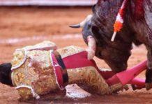 la Vuelta 2017 anti-corrida. Les taureaux peuvent dormir sur leurs deux oreilles