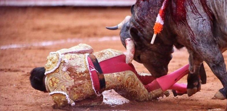 Corrida Image anti-corrida la vuelta 2017. pas de sang dans les arènes de nimes