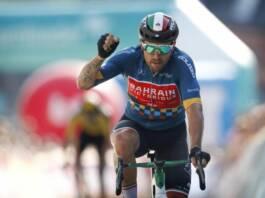 Colbrelli, Sagan, Evenepoel, Cosnefroy dans les engagés aux championnats d'Europe 2021